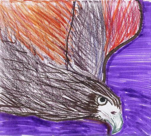 Eagle July 3 12