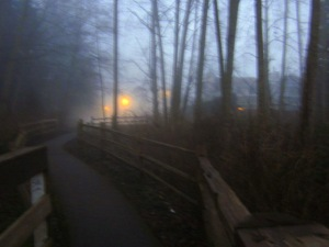 fog bridge