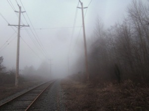 rr track fog